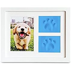 Dog Paw Prints Pet memorial Triple Photo Frame 4x6 With Clay Impression Kit, Perfect Keepsake picture Frame for Pet Lovers