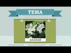 Beneficios, nutrientes y propiedades del azahar. Más información en: http://www.remediocaseronatural.com/comidas-sanas-beneficios-azahar.htm