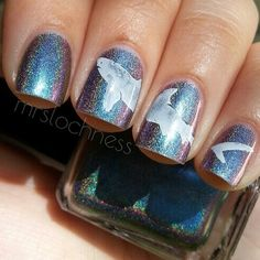 holographic shark