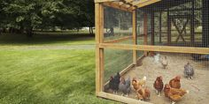 My Chicken Coops – My Chicken Coops