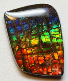 Ammolite, looks like stained glass