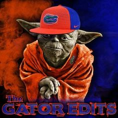 Fla Gators, Florida Gators Softball, Football Memes, College Football, College Sport, Florida Gators Wallpaper, University Of Florida, Baked Macaroni, Macaroni Cheese