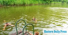 It's the perfect season for a spot of wild swimming in Norfolk's rivers, and local wild swimmer Imogen Radford rounds up her favourites places for a dip. Thetford Forest, Canoe Club, Pool Picture, Chestnut Horse, Swim Caps, Beautiful Forest, Sandy Beaches, Norfolk, Rivers