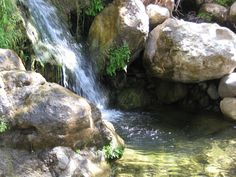 Solstice Canyon ~ Malibu, CA