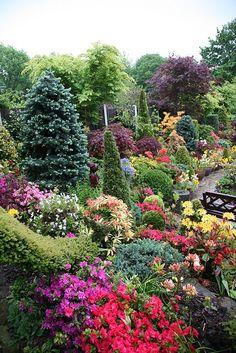 Upper garden at dusk