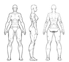 study of anatomy Woman by EnriqueNL Character Reference Sheet, Character Model Sheet, Character Modeling, 3d Character, Drawing Reference, Character Concept, Concept Art, Anatomy Reference, Female Drawing