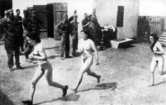 Name: Women arriving to a concentration camp and being sent to medical examination, how humiliating and frightening.