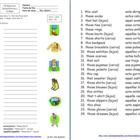 Images For Demonstrative Adjectives Spanish Worksheet For The Classroom Pinterest