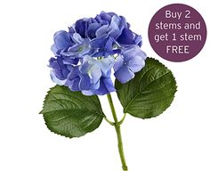 Buy Dark Blue Hydrangea Stem Online at Bloom