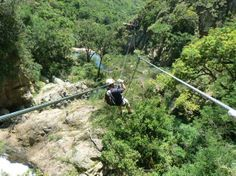 These ziplines are the world's most scenic, fastest, and intriguing. Clip in. Nature Reserve, Continents, Have Time, South Africa, Paths, Places To Visit, Journey, The Incredibles, Waterfalls