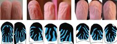 """A paper by myself, Romann Weber, Ritesh Kotecha and Joseph Palazzo just appeared in Brain, Behavior and Evolution. Its title is """"Are Wet-Induced Wrinkled Fingers Primate Rain Treads?"""" We provide evidence that the wrinkle morphology on pruney fingers has the expected signature features for a drainage network, designed to efficiently squirt away water during grip."""