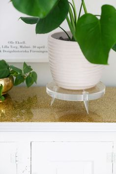 DIY lucite plant stand
