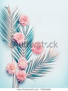 Mint Green Wallpaper Iphone, Leaves Wallpaper Iphone, Palm Leaf Wallpaper, Pink Iphone, Wallpaper Desktop, Pastel Wallpaper, Nature Wallpaper, Turquoise Flowers, Pink Turquoise
