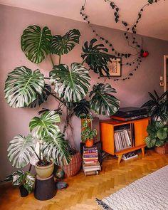 New Stylish Bohemian Home Decor and Design Ideas takemehome Home Design, Interior Design, Design Ideas, Tropical Backyard, Cozy Apartment, Plant Decor, Bohemian Decor, Houseplants, Interior And Exterior