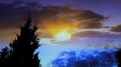 Sunset/tree