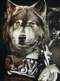 Born to be wild Harley Davidson Posters, Harley Davidson Tattoos, Harley Davidson Pictures, Wolf Images, Wolf Pictures, Motorcycle Posters, Motorcycle Art, Motorcycle Garage, Native American Pictures