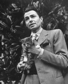 «Non c'è nessuna necessità di insegnare ai gatti come recitare o divertirsi poiché essi sono dotati di ineffabile ingegno in quest'arte.»   James Mason