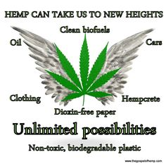 Unlimited possibilities with hemp. Save our planet. Go green! Weed Facts, Marijuana Facts, Dog Separation Anxiety, Dog Anxiety, Headache Relief, Biodegradable Plastic, Biodegradable Products, Hemp Recipe