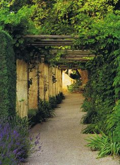 Beautiful garden pathway in Provence