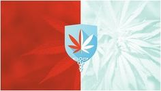 Medical Marijuana: Helpful or Harmful?