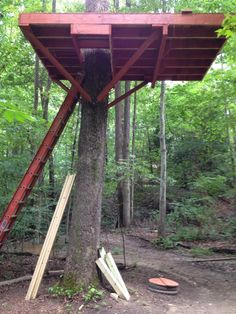 My Tree House , Platform - side view
