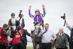 """Horse Racing Ireland on Instagram: """"🗣️ """"The Irish Derby is the ultimate test."""" - Aidan O'Brien. ⚔️ - That test was aced by CAPRI back in 2017 for Ballydoyle 🙌🙌🙌 -"""" Horse Racing, Derby, Ireland, Irish, Capri, Horses, Instagram, Irish People, Horse"""