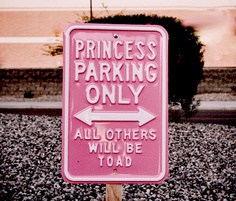 If i could do a girl themed nursery with car stuff...i would use this Princess Parking