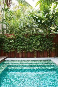 Inspired by a family trip to Bali, this compact garden includes kid-friendly zones and plenty of space for entertaining. Small Backyard Pools, Outdoor Pool, Small Pools, Modern Backyard, Outdoor Spaces, Outdoor Decor, Tropical Landscaping, Backyard Landscaping, Landscaping Ideas