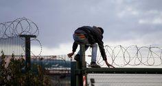 Cameron e Hollande: per i migranti cani poliziotto e palizzate