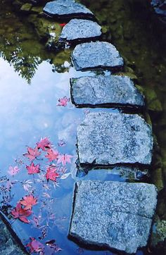 """""""One of the secrets of life is to make stepping stones out of stumbling blocks. Arthritis Foundation, Outside Living, Secret Life, Ponds, Garden Paths, Stepping Stones, Yard, Leaves, Community"""