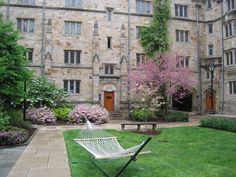 Yale University Campus, New Haven.