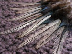 Gorgeous Real Rooster Feathers Natural Golden Badger by SolDoggie, $4.99
