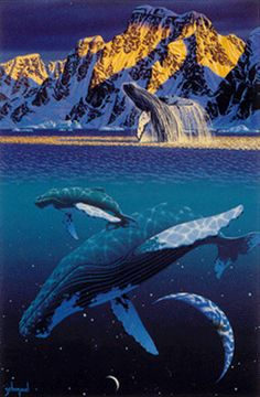 """The Humpback's World"" - by Schim Schimmel"