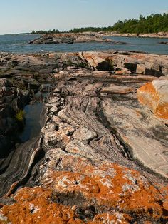 The amazing rocks and colours of Franklin Island (Snug Harbour, Carling Township)! A wonderful place to paddle a canoe or kayak, swim, or explore. Snug Harbor, Algonquin Park, Lake Huron, Canoe And Kayak, Treasure Island, Archipelago, Summer Travel, Natural World, Geology