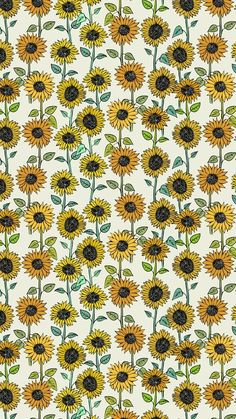 Sunflower wallpaper, sunflower pattern, pattern flower, cute backgrounds, p Cute Backgrounds, Cute Wallpapers, Wallpaper Backgrounds, Pattern Wallpaper Iphone, Artsy Wallpaper Iphone, Hipster Wallpaper, Halloween Backgrounds, Wallpaper Art, Iphone Backgrounds