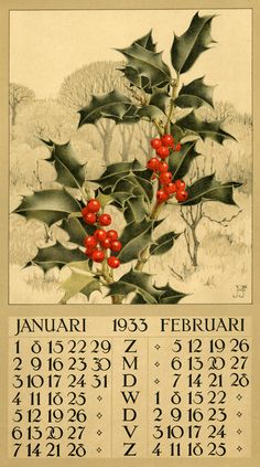 Jan Voerman, Jr. (1890-1976) Dutch painter, draftsman, illustrator and lithographer (calender art, 1933) Famed for botanicals; no other information available.