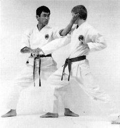 Haitō yoko mawashi uchi