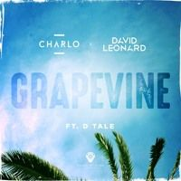 Charlo & David Leonard - Grapevine Ft. D - Tale (Original Mix) by charlo on SoundCloud