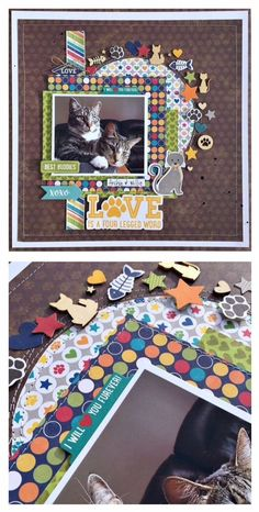 Best Buddies (cats) scrapbook layout created by Kristine Davidson featuring Jillibean Soup Fur Fusion #scrapbooklayouts #scrapbooking101