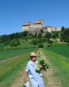 Growing, nurturing cooking, sharing... Parma FWT
