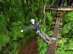 Photo of Rotorua Canopy Tours