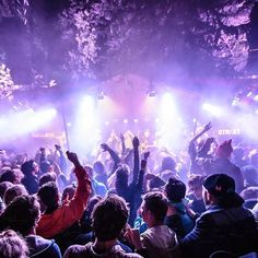Sometime we just need a little music #party #music #event #dj #live #festival #intimate #band #musician #fans #fun #life #live #love #hobby #night #nightout #social #goingout #inviteez