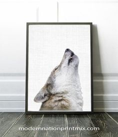 Hey, I found this really awesome Etsy listing at https://www.etsy.com/ca/listing/463417676/wolf-print-wolf-photography-wolf-art