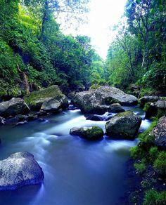 Petanu River, Bali
