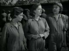 Caged (1950) Trailer-Caged (1950 film)-Caged is a 1950 film noir directed by…