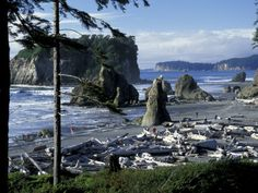 Ruby Beach, WA - I was here just last weekend! Though it was pouring rain...