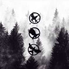 @acheetah42496 this #photo is so cool! #TheHungerGames #CatchingFire #Mockingjay #Part1 #pins #UNITE