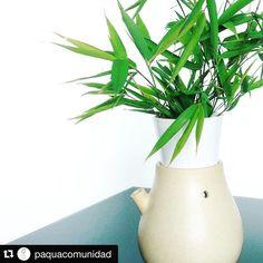 El 22 de abril celebramos en todo el mundo el #diadelatierra  por eso comparto con ustedes el concurso que @paquacomunidad tiene para los que amamos lo natural. Participar es muy facil: ------------- Queremos difundir las buenas ideas para el #diadelatierra  y por eso queremos regalar este Mini Cultivo Hidroponico  y una cosecha Paqúa  Qué tienes que hacer?  1. Taggea un amigo en un comentario de esta foto (quien tu creas disfrute ser parte de @paquacomunidad)  2. Sube una foto/video con el…