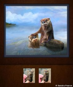 The 2018 Grand Imaging Award finalists in the Artist category Commercial Photography, Otters, Professional Photographer, Photographers, Awards, Photoshop, America, Magazine, Artist