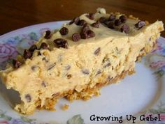 Peanut Butter Chocolate Chip Pie Recipe